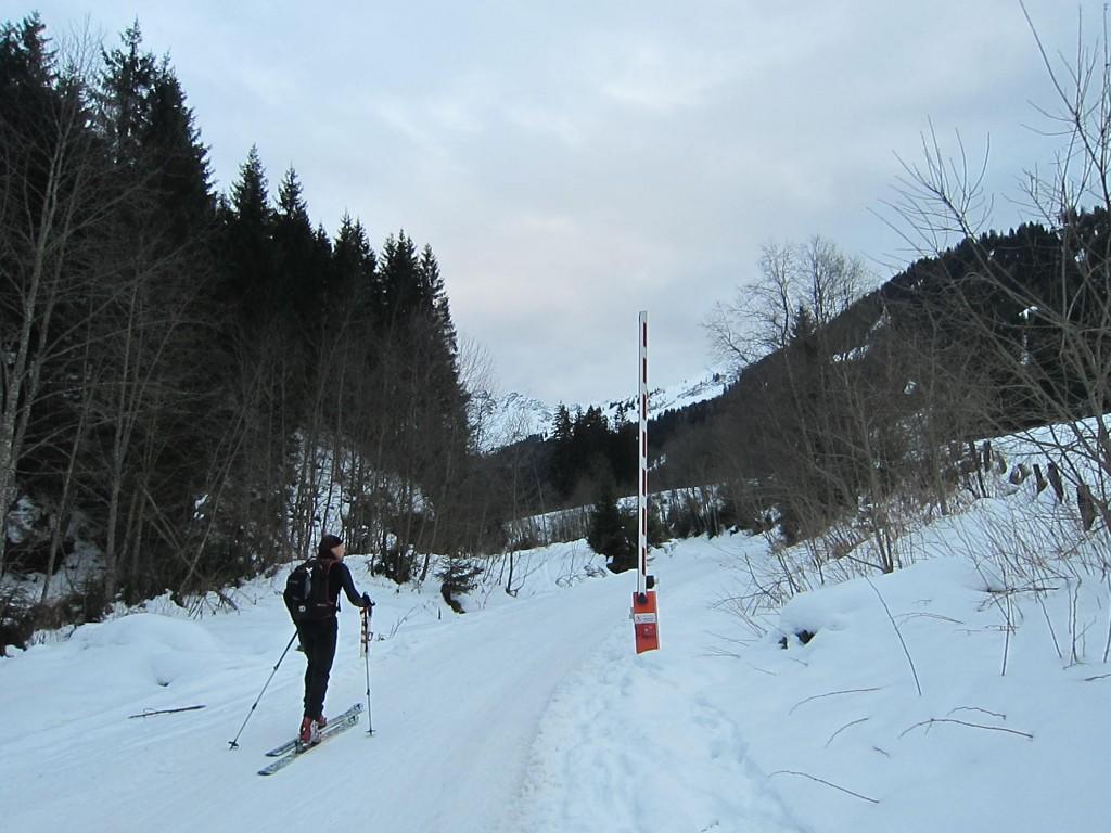 Sagtaler Spitze (2)