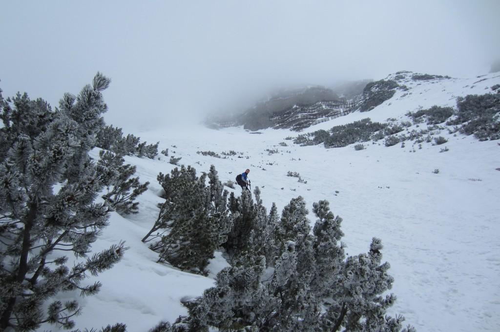 Schneeschuh Tour Seegrube (37)