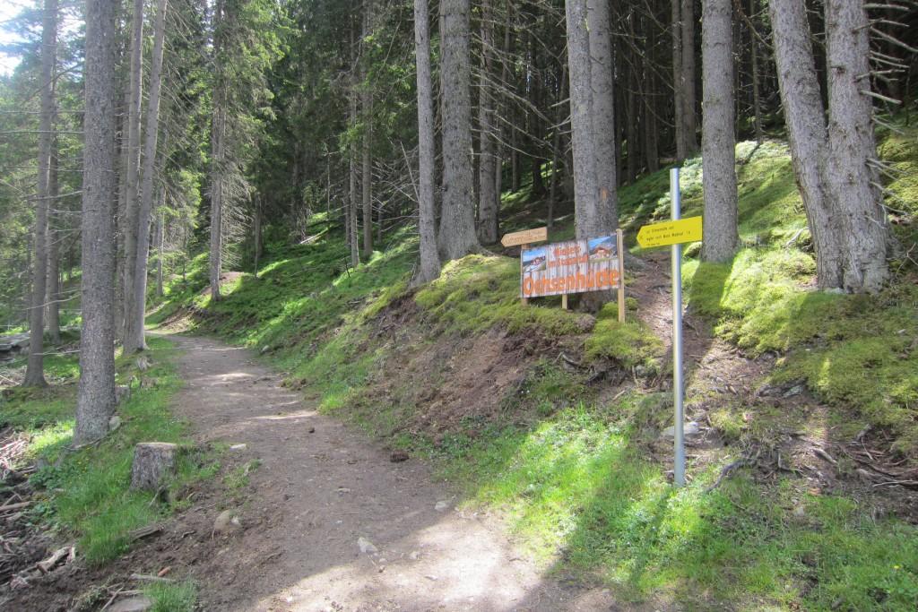 Lämpermahdspitze, Serles (1)