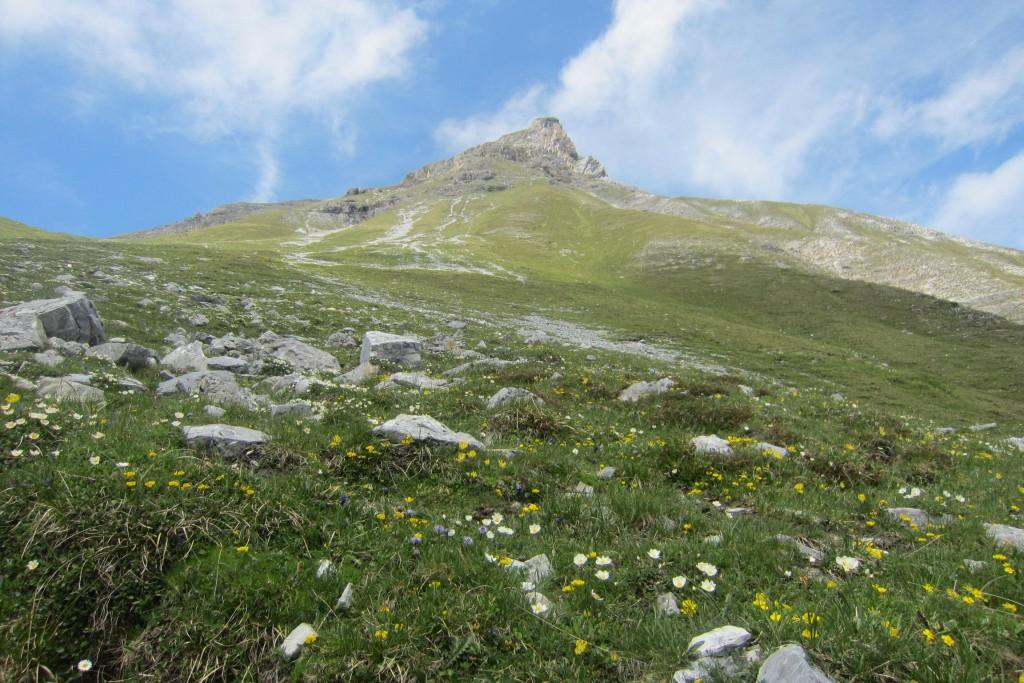 Lämpermahdspitze, Serles (3)