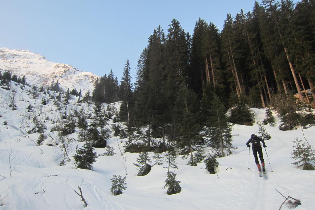 Ellesspitze (4)