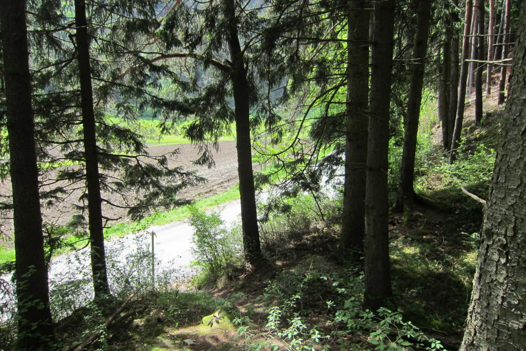 Neunerspitze, Viggarspitze, Bärenbader Jöchl(12)