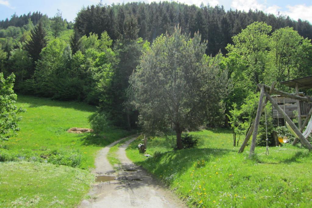 Neunerspitze, Viggarspitze, Bärenbader Jöchl(15)