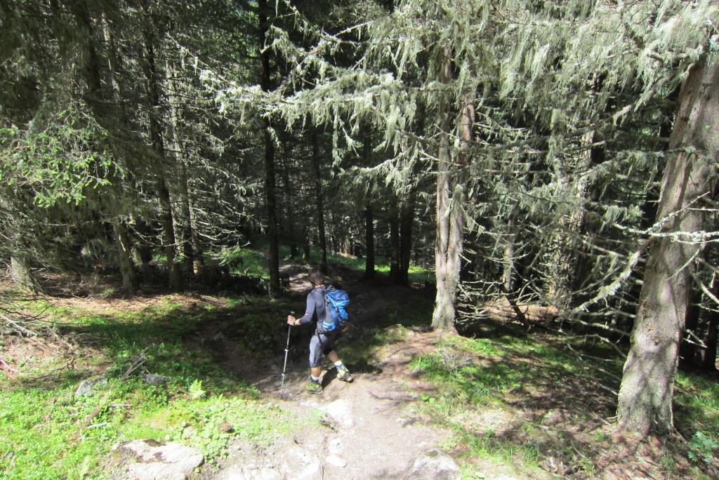 Brennerspitze (56)
