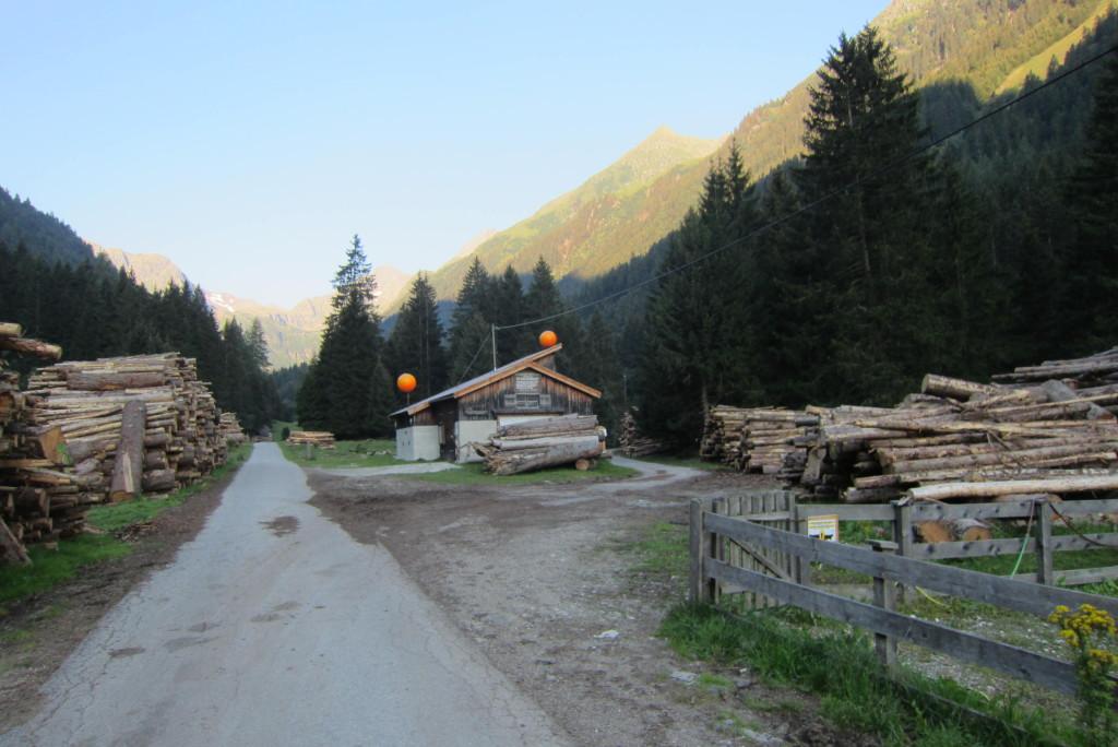 Habicht über Gschnitz (2)