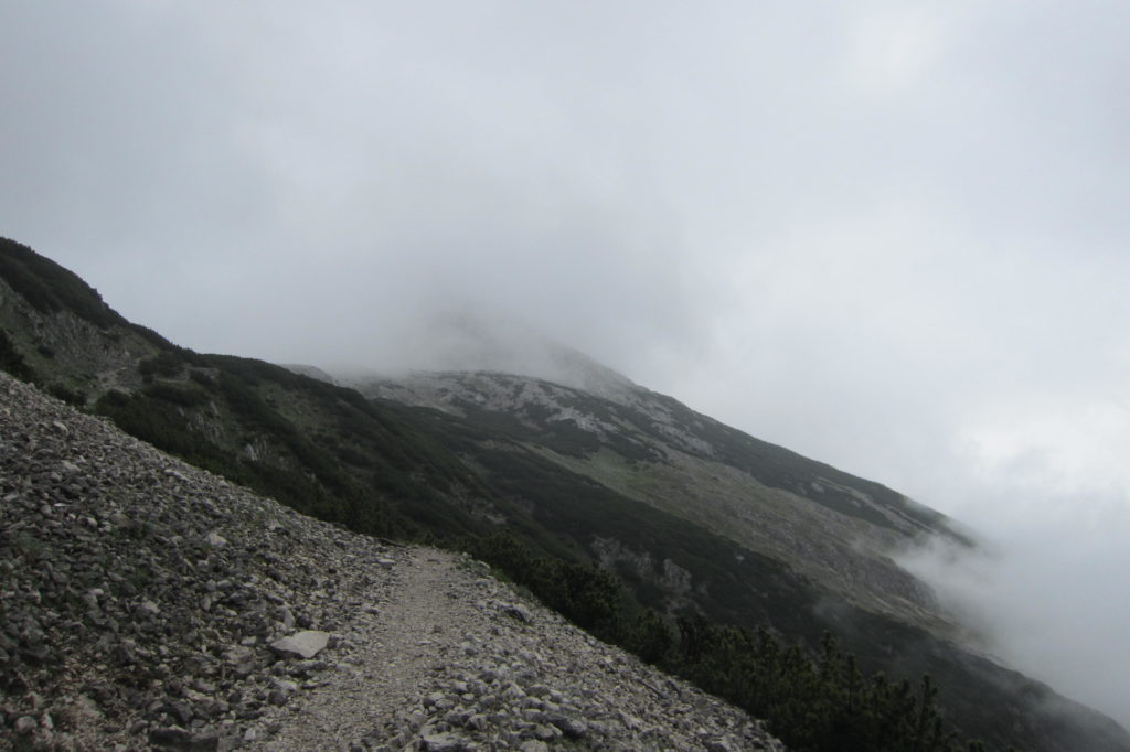 Speckkarspitze (5)